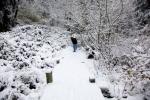 snow_0428
