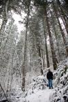 snow_0445