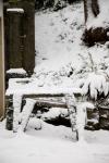 snow_0482