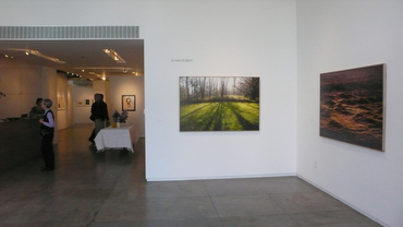 Installation view #1, opening night