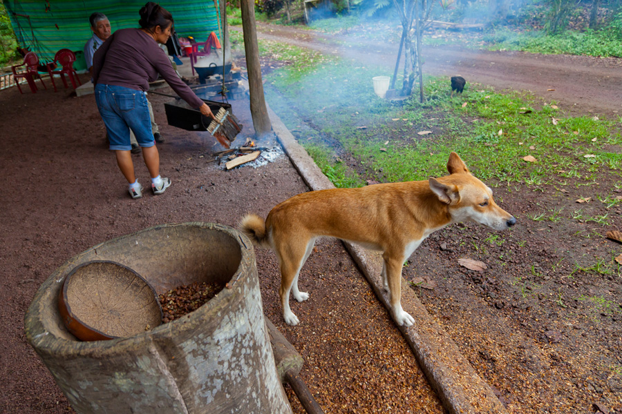 El Trapiche, a small, family run farm, sells small batch, organic coffee.  Here, they are roasting the coffee beans