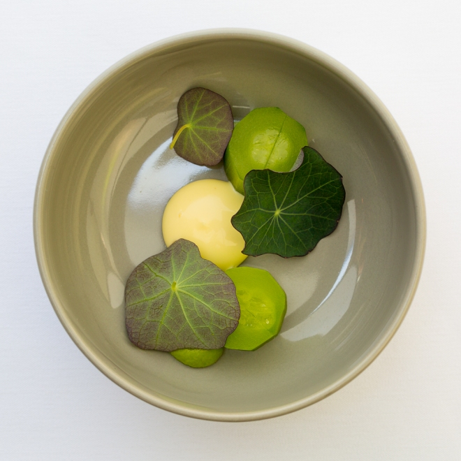 Cucumber, Egg Yolk, nasturtium at Castagna Restaurant in Portland, OR, a clean-lined, minimalist restaurant serving fixed-price, high-end modernist Northwest dinners.