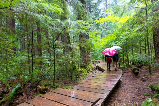 Lynn Canyon Park in the District of North Vancouver, features a pedestrian suspension bridge which hangs 50 meters above the canyon.  There are extensive hiking trails in the park, which is part of the Baden-Powell Trail.  Entrance to the park is free. Va